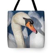 Mute Swan Portrait Tote Bag