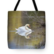 Mute Swan Reflection Tote Bag