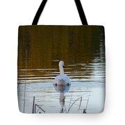 Mute Swan Swimming Away Tote Bag