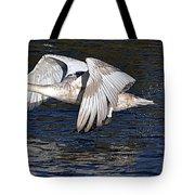 Mute Swan Take Off Tote Bag