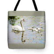 Mute Swan With Cygnets Tote Bag