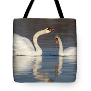 Mute Swans Drinking Tote Bag