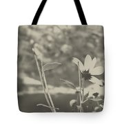 Muted Beauty 1 Tote Bag