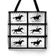 Muybridge: Horse Tote Bag