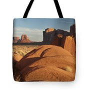 Mv Overlook 7297 Tote Bag