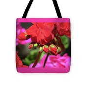 My Beautiful Geraniums And Buds - Images From The Garden Tote Bag
