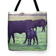 My Calf Tote Bag
