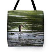 Cormorant - My Catch For The Day Tote Bag