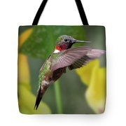 My Curious Fellow Tote Bag