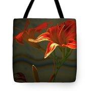 My Daylilies 2 Tote Bag