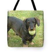 My Favored Toy Tote Bag
