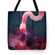 My Favorite Reflection   Tote Bag