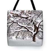 My Favorite Tree In The Snow Tote Bag
