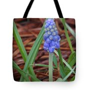 My First Bluebells Tote Bag