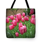 My Focus Was On The Tulips Tote Bag