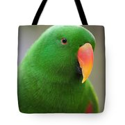 My Friend Kazuko Tote Bag