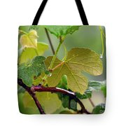 My Grapvine Tote Bag