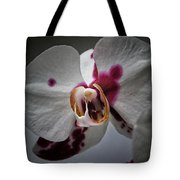 My Growling Dragon Orchid. Tote Bag