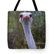 My Head Is Not In The Sand Anymore Tote Bag