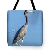 Erect Walking Tricolored Tote Bag