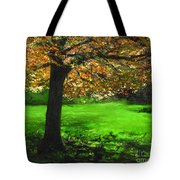 My Love Of Trees I Tote Bag