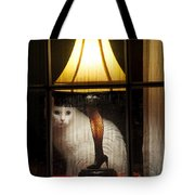 My Major Award Tote Bag by Kenneth Albin