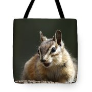 My Name Is Alvin Tote Bag