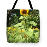 My Own Sun In My Backyard  Tote Bag