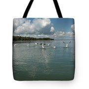 My Pelicans Tote Bag