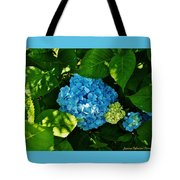 My Pride And Joy Hydrangea Tote Bag