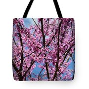 My Redbuds In Bloom Tote Bag