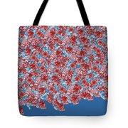 My Rose Garden Tote Bag