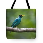 My Song To You.. Tote Bag