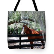 My Southern Friend Tote Bag