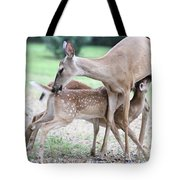 My Sweet Babies Tote Bag