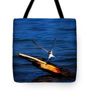 My Tern To Perch Tote Bag