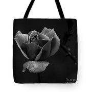 My Time To Come... Tote Bag
