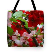 My Two Quince Worth Tote Bag