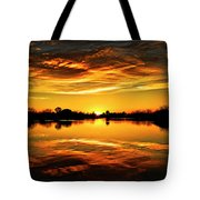 My View  Tote Bag