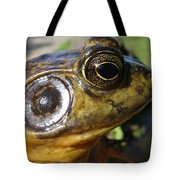 My What Big Eyes You Have Tote Bag