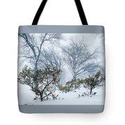 My Winter Love Tote Bag