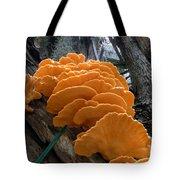 Myakka Fungi Tote Bag