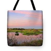 Myakka Wetlands By H H Photography Of Florida Tote Bag