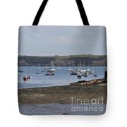 Mylor Panorama Tote Bag