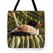 Myna In The Palms Tote Bag