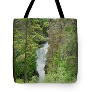 Myrtle Creek Falls  Tote Bag