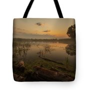 Mysterious Morning Time In Swamp Area. Landscape Tote Bag