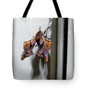 Mysterious Visitor Tote Bag