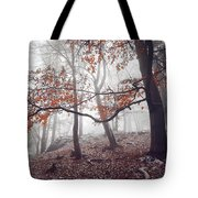 Mysterious Woods  Tote Bag