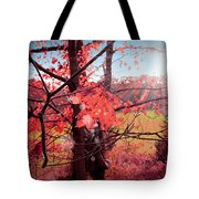 Mystic Day  Tote Bag